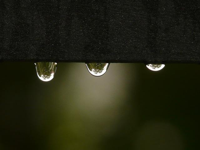 Murmullos de lluvia