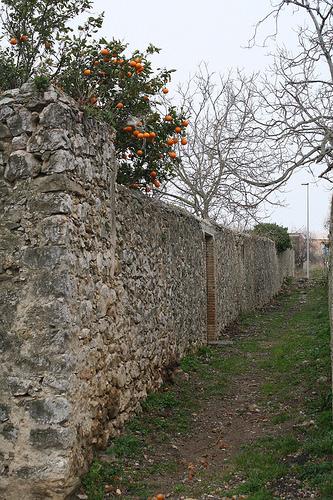 Villa Amparo, el último lugar donde Antonio Machado fue feliz busca un nuevo inicio