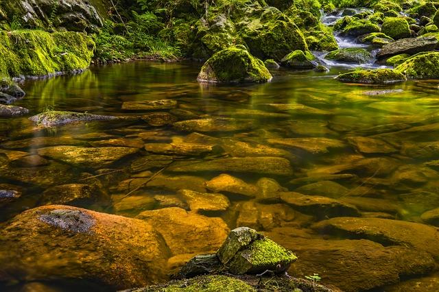 Relatos con Historia… «El río de la ciencia» de Antonio Miralles Ortega
