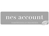 Logo s Accountants Nes