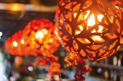 Restaurant-De-Sallandse-Berg-Salade-Lampen
