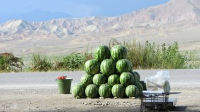 Au bord des routes, on trouve régulièrement des vendeurs de melons, pastèques, tomates, oignons, ... On a eu plusieurs melons offerts !