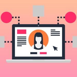 Pro Website Management