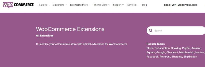 Extensiones para DH E-commerce Básico de Diseño Web Lugo