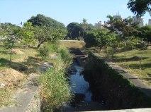 Área do córrego TIquatira, refúgio verde da região.