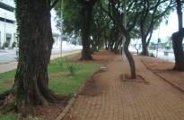 km 6,5 - Avenida Braz Leme