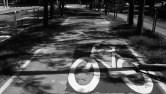 km 15 - Ciclovia da Pedroso