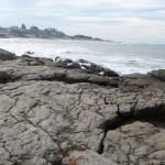 Mar del Plata - 74