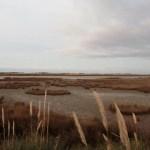 San Clemente del Tuyú - 98