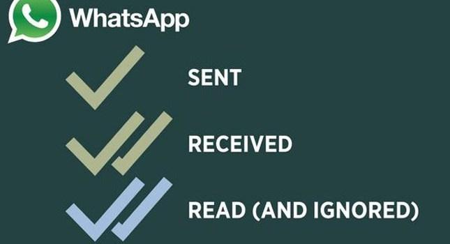 Como se descargar whatsapp para android