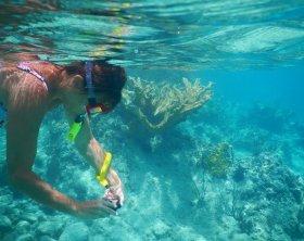 Snorkeling na Sicília