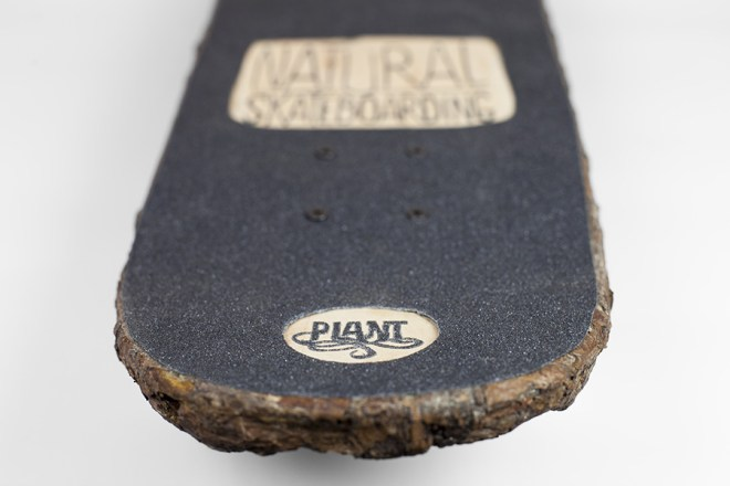 skate_wood_face_7_monsieur_plant