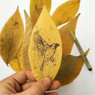Alfred Basha - Leaves as paper 3