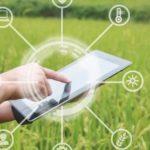 Gestão sustentável no agronegócio, energia solar fotovoltaica