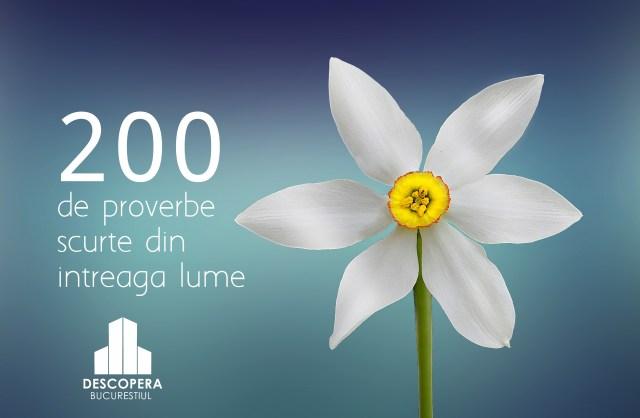 200 de proverbe scurte din intreaga lume