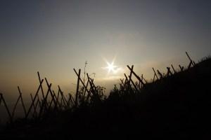Vale do rhone 2 - Vale do rhone 2