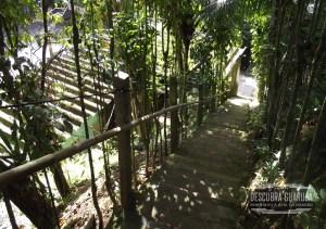 Escadaria de acesso a Praia do Éden - Via Estacionamento privado