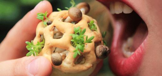 3d food - Imprimir en 3D con organismos vivos