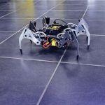 SPIDER1-150x150 Tiny Ringo, el robot que enseña robótica a los más peques