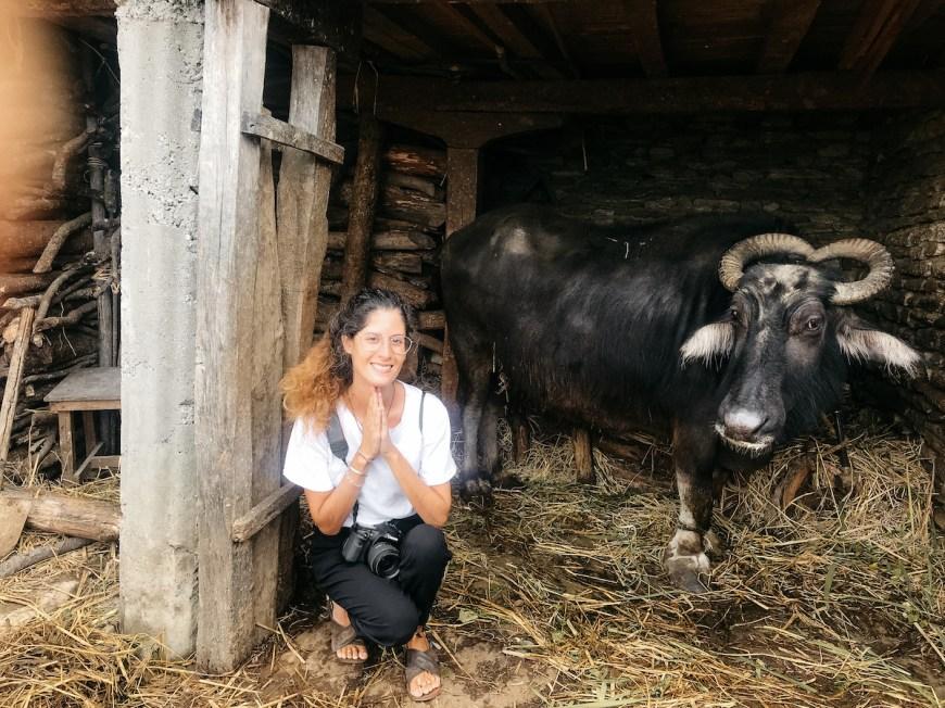 Anna junto a una búfala en el Sarangkot, Nepal