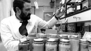 Diethylstilbestrol found in Veal Meat and in Baby Food - Germany Food Scandal...