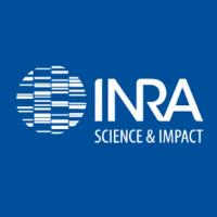 Inra_International logo image