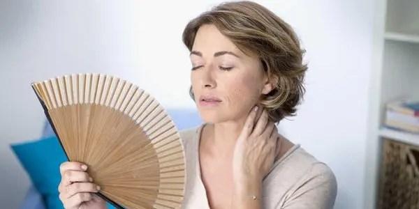 menopause Hot Flashes image