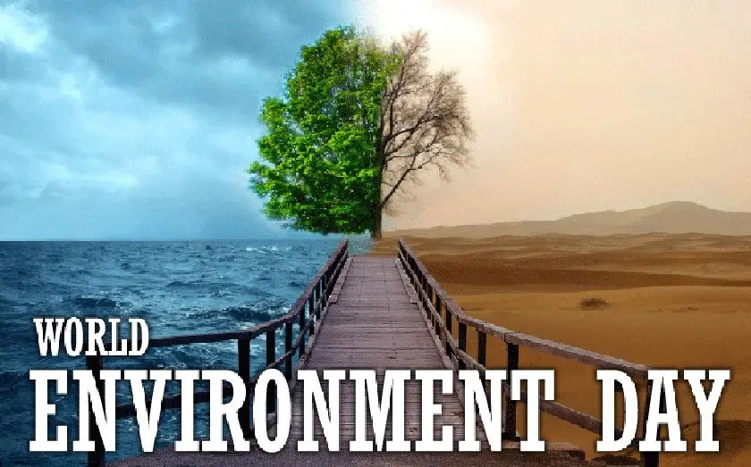 Hey, it is World Environment Day !