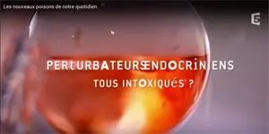 Perturbateurs endocriniens : tous intoxiqués?