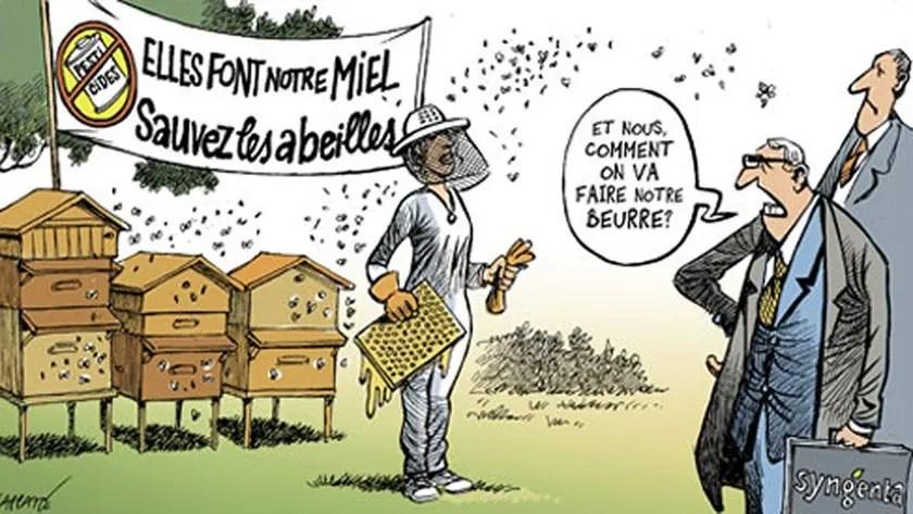 Protégeons la pollinisation !