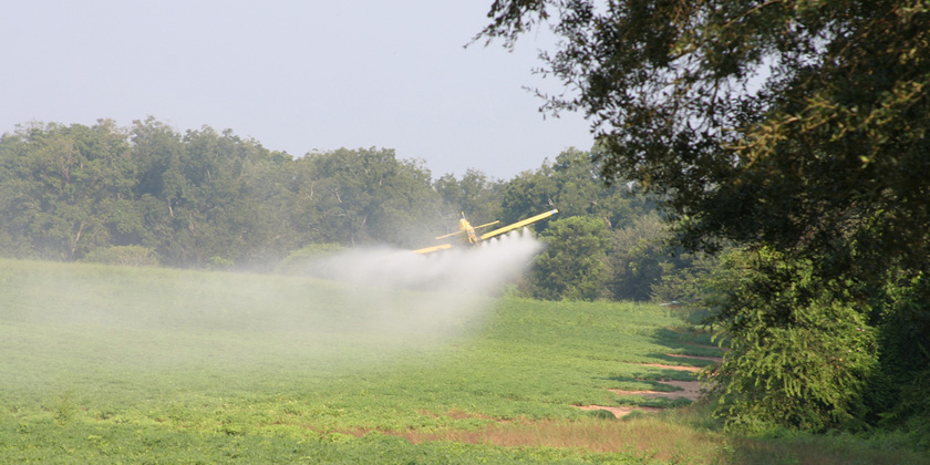 EU pesticide-poisoning data could be harmonised between Member States