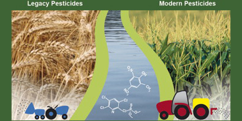 Legacy pesticides, and the compounds produced as they break down, remain a hazard to aquatic environments