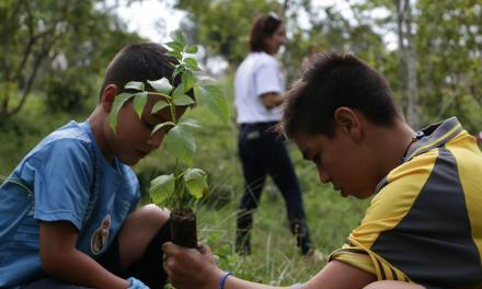 Cornare y su aporte ambiental en la región