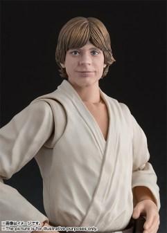 SH-Figuarts-ANH-Luke-Skywalker-006
