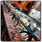 La ciudad de las bicicletas amarillas