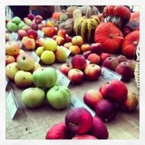 Muestra de manzanas y calabazas