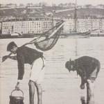 Mariscadores en la bahía