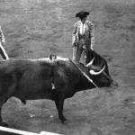 1912: Antonio Fuentes en la Plaza de Toros de Cuatro Caminos