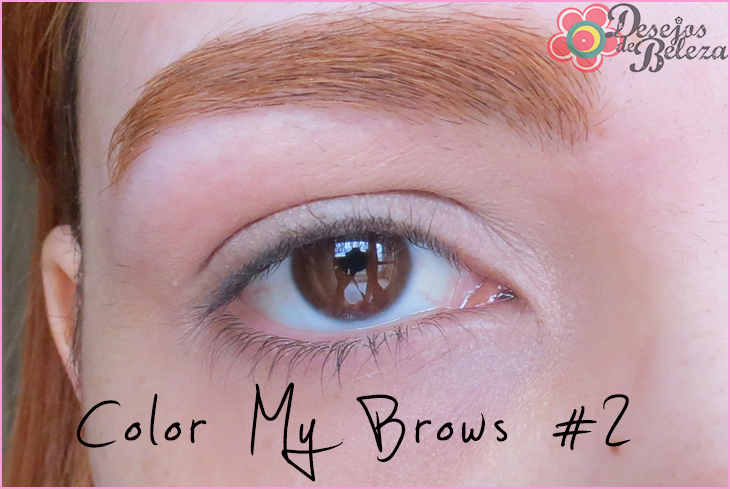 color my brows swatch