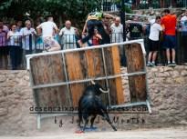 Lucena del Cid, toros de Jacinto Ortega, V.