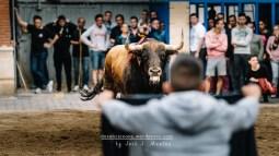 lallosa_SVF2017_5
