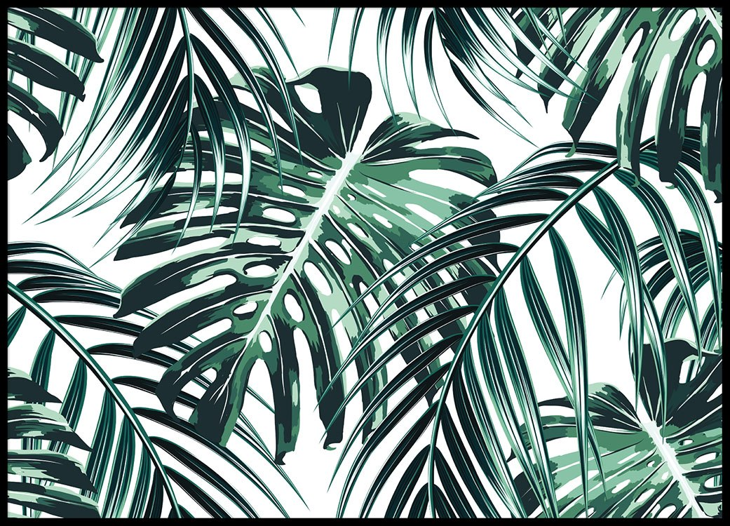Posters, 50 X 70 And 70 X 100. Green Palm Leaf