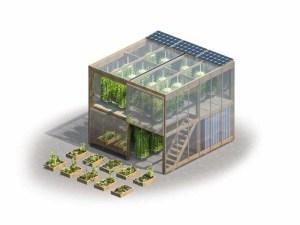 agricultura urbana 2