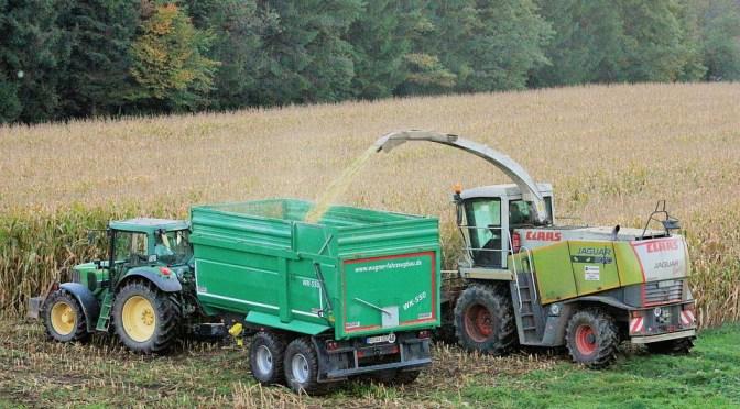 O agronegócio é uma megatendência de investimentos no setor agrícola