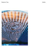 Elephant Tree – Habits | Desert-rock > Chroniques CD