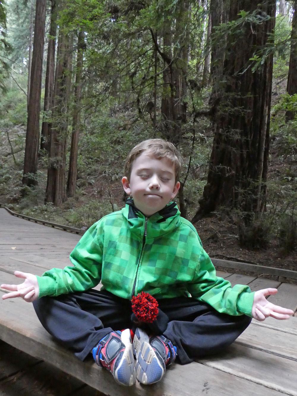 muir-woods-meditating