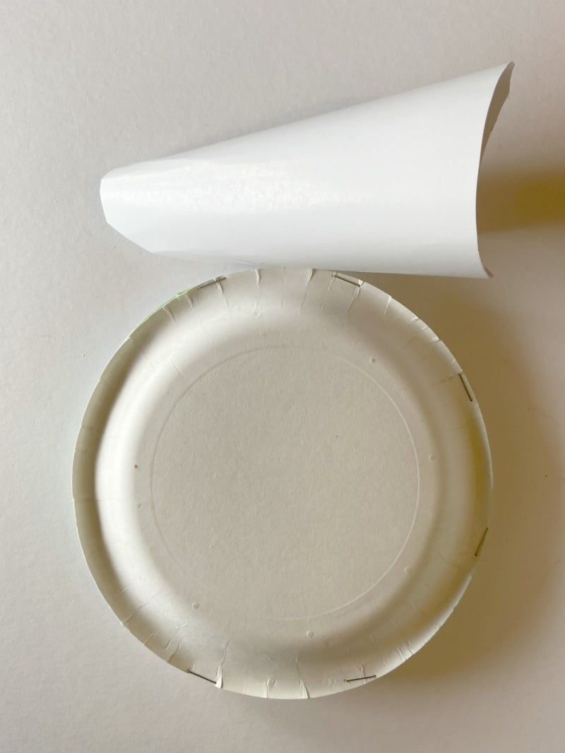 Paper plates form the shape of D-0 Craft