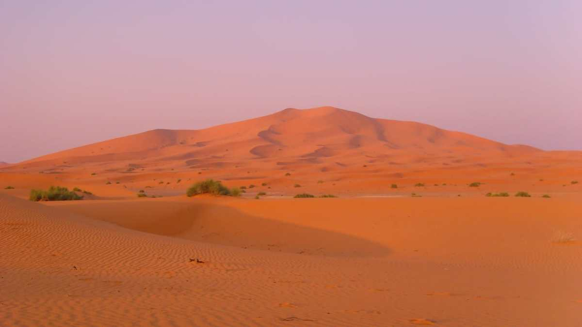 2 day fes desert tour