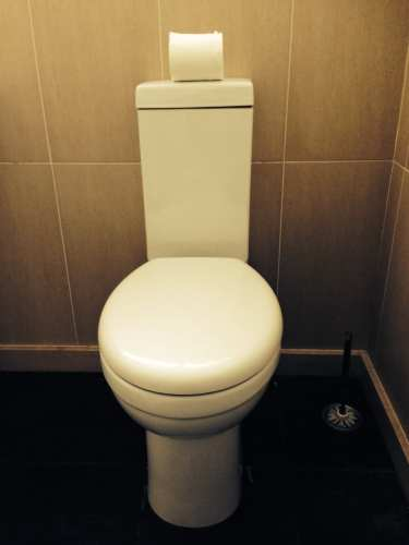 Low cistern toilet
