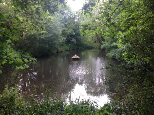 plumstead-ponds-1